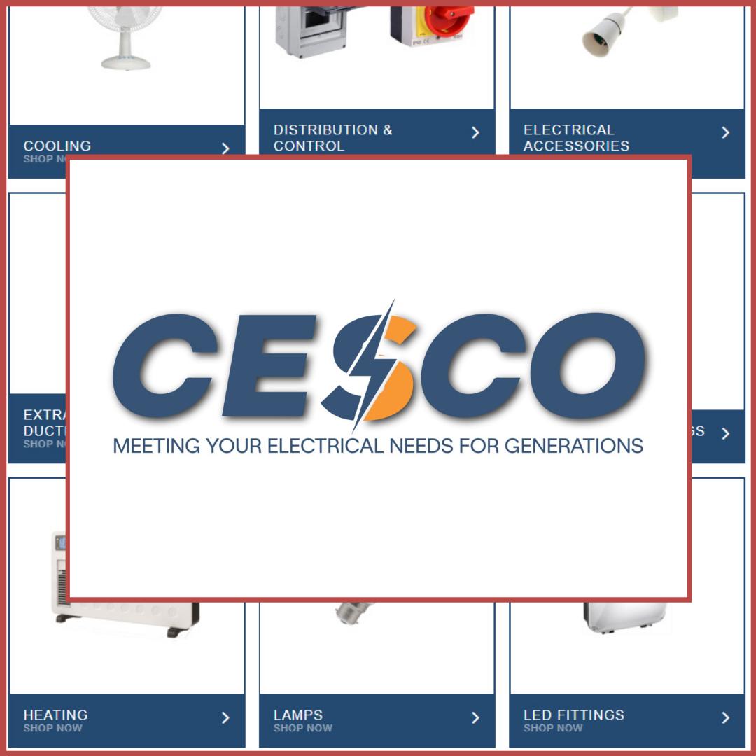Copy of CECSO LinkedIn